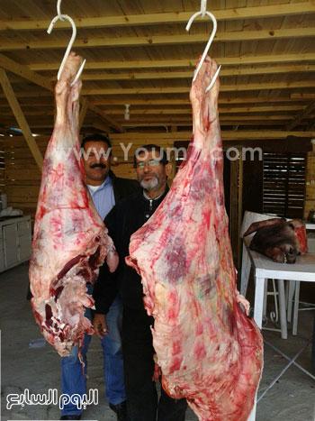 شوادر اللحوم (3)