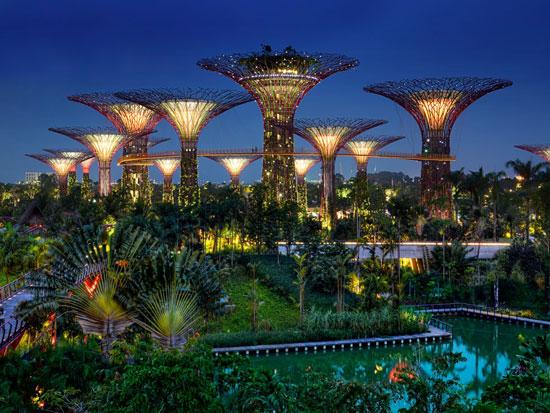 حدائق سنغافورة  -اليوم السابع -12 -2015