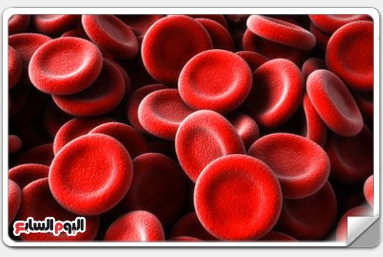 1 تحدث الأنيميا بسبب انخفاض تركيز الهيموجلوبين أو نقص كرات الدم الحمراء -اليوم السابع -12 -2015