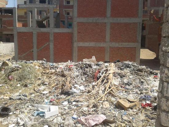 صحافة المواطن، تراكم القمامة، صرف صحى، قرية الرملة، منطقة الجزيرة  (3)