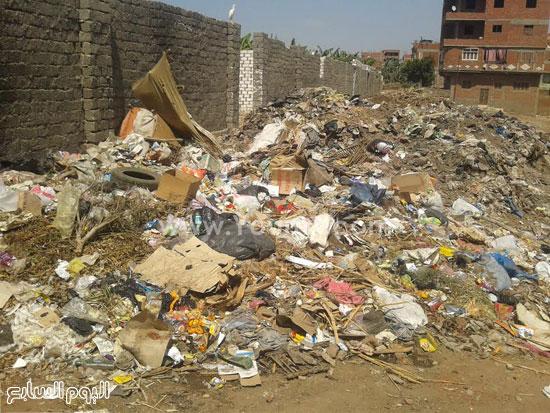 صحافة المواطن، تراكم القمامة، صرف صحى، قرية الرملة، منطقة الجزيرة  (5)