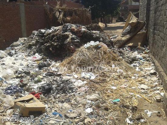 صحافة المواطن، تراكم القمامة، صرف صحى، قرية الرملة، منطقة الجزيرة  (7)