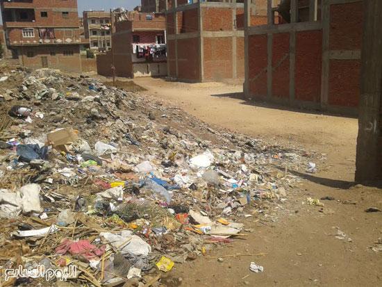 صحافة المواطن، تراكم القمامة، صرف صحى، قرية الرملة، منطقة الجزيرة  (8)