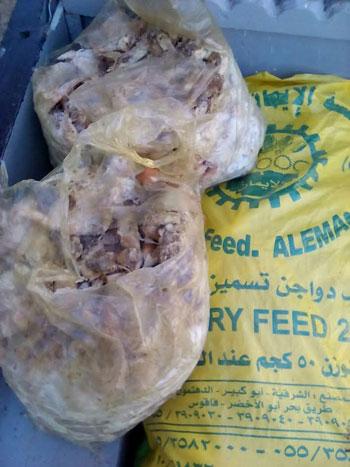 ضبط 2 طن دجاج مجمد غير صالح للاستهلاك  (3)