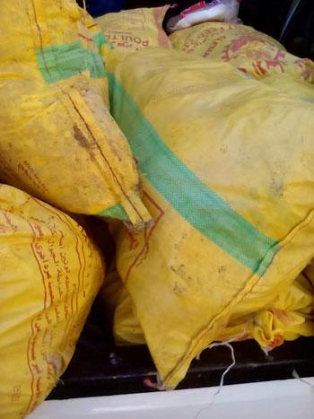 ضبط 2 طن دجاج مجمد غير صالح للاستهلاك  (5)