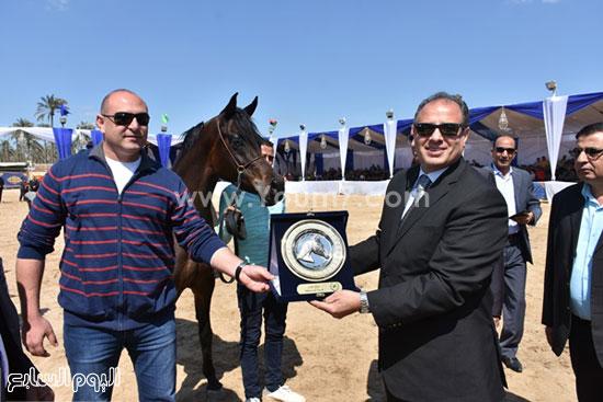 مهرجان-البحيرة-الدولى-التاسع-للخيول-العربية-الأصيلة-(11)