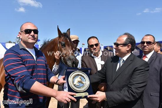 مهرجان-البحيرة-الدولى-التاسع-للخيول-العربية-الأصيلة-(13)