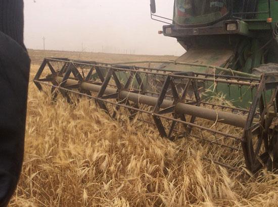 جولة وزير الزراعة فى مطروح (2)