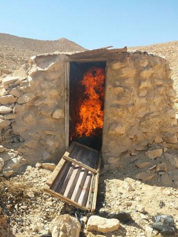 ضبط وحرق 4 مزارع نباتات مخدرة (4)