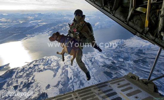 قفزة جندى مع كلبه من طائرة حربية  -اليوم السابع -4 -2015