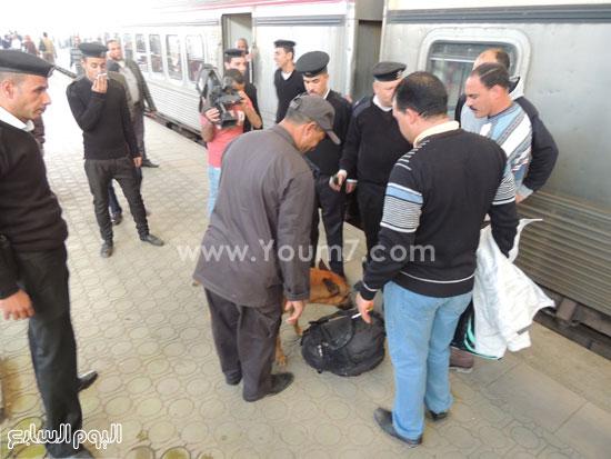 كلب الحراسة يشم حقيبة مسافر فى محطة مصر -اليوم السابع -4 -2015