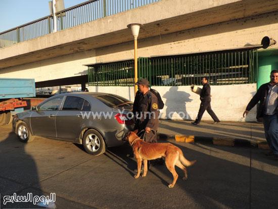 كلب الحراسة يتفقد سيارة مواطن -اليوم السابع -4 -2015