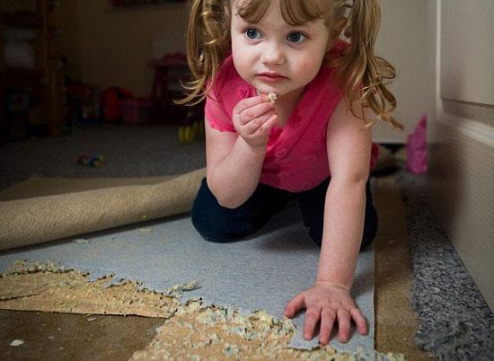 . جيسيكا تأكل من الأرضية -اليوم السابع -4 -2015