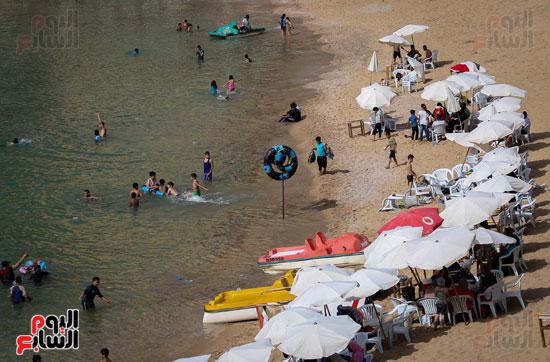 شواطى الاسكندرية (10)