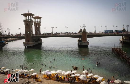 شواطى الاسكندرية (11)