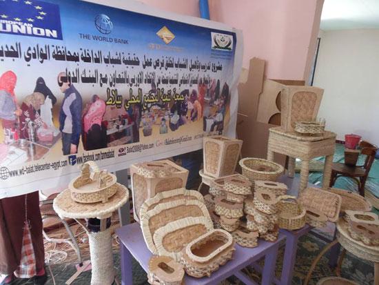 المشروعات الصغيرة لشباب مركز بلاط بالوادى الجديد  (1)