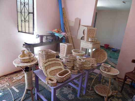 المشروعات الصغيرة لشباب مركز بلاط بالوادى الجديد  (2)