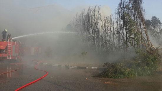 الحماية المدنية تسيطر على حريق (1)