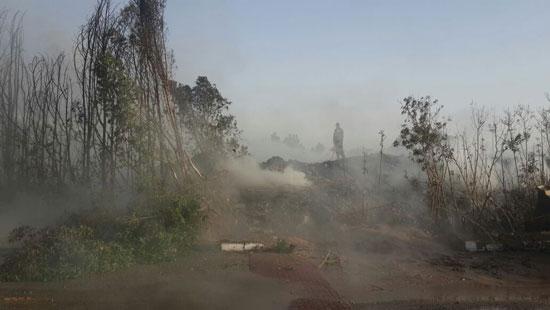 الحماية المدنية تسيطر على حريق (3)