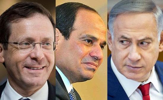 إسرائيل تدرس مبادرة السيسى  (3)