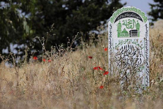 أطفال سوريا فى لبنان بين المدارس والقبور وانتظار الفرج  (15)