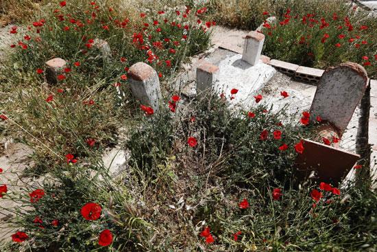 أطفال سوريا فى لبنان بين المدارس والقبور وانتظار الفرج  (17)