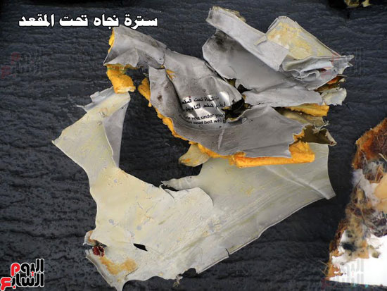 الطائره المصريه المنكوبه ، فرنسا ، مصر ، القوات المسلحه (4)