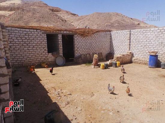 قرى فقيرة فى أسيوط (21)