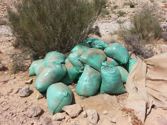 مقتل 13 إرهابيا وضبط 145 لغما فى وسط سيناء وجبل الحلال (13)