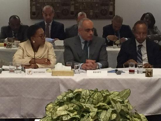 مصر ترأس اجتماعاً تشاورياً بين مجلسى الأمن الدولي والسلم الإفريقي (4)