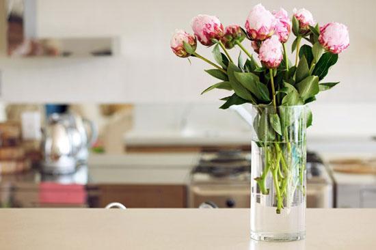 حافظى على الزهور باستخدام المياه والخل الأبيض -اليوم السابع -6 -2015