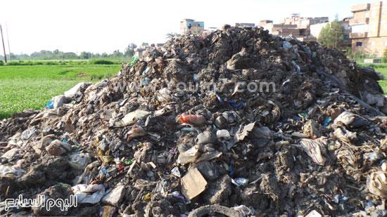 القمامة متراكمة خلف الشارع الرئيسى بفوة -اليوم السابع -6 -2015