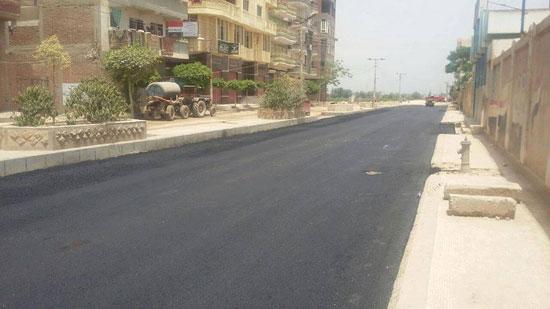 رصف شوارع دسوق  (2)