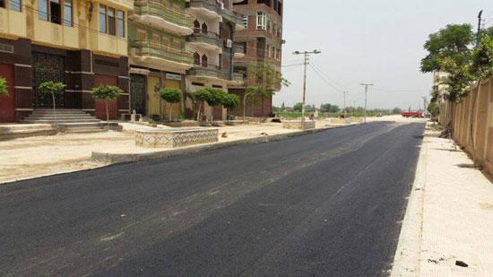 رصف شوارع دسوق  (3)