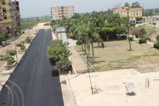 رصف شوارع دسوق  (6)