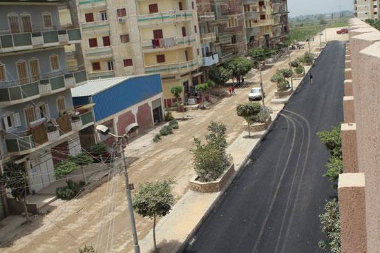 رصف شوارع دسوق  (7)