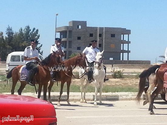 قوات الأمن تستخدم الخيل لتمشيط محيط إستاد برج العرب قبيل مباراة الأهلى والزمالك -اليوم السابع -7 -2015