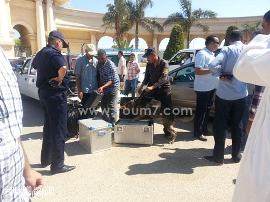 قوات الأمن تستخدم الكلاب البوليسية للكشف عن المفرقعات  -اليوم السابع -7 -2015