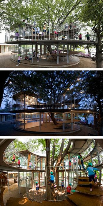 بالصور: معماريون يعدلون شكل 11 منزلا للحفاظ على الشجر  720153123732151