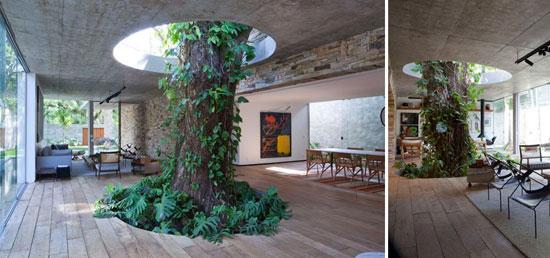 بالصور: معماريون يعدلون شكل 11 منزلا للحفاظ على الشجر  720153123732316