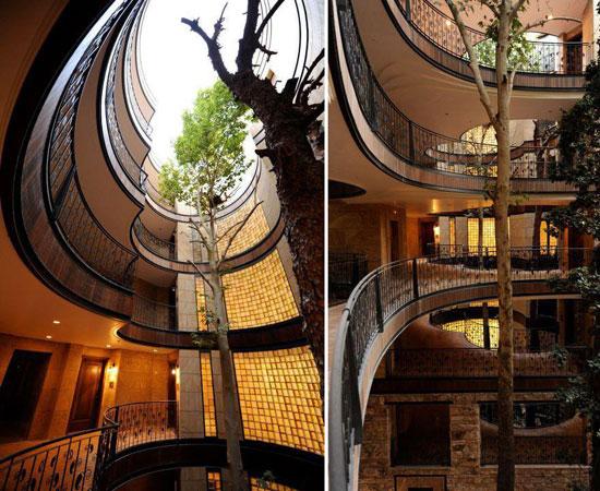 بالصور: معماريون يعدلون شكل 11 منزلا للحفاظ على الشجر  720153123732317