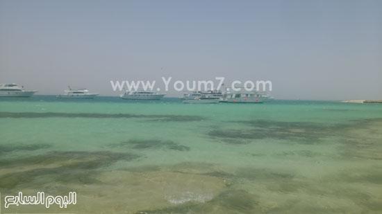 العشرات من اللنشات البحرية يومياً تقل السياح للجزيرة -اليوم السابع -7 -2015