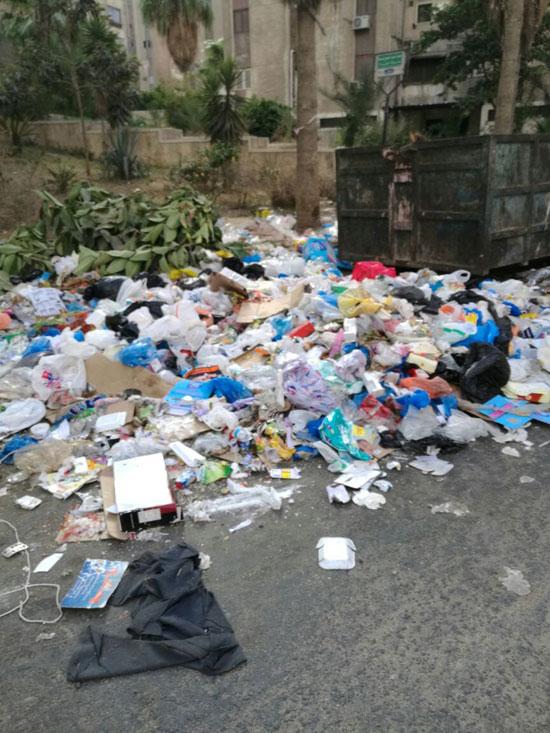 تفاقم-أزمة-تراكم-القمامة-بمنطقة-مصطفى-كامل-(3)