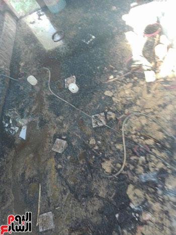 احتراق 500 نخلة فى مزرعة بمنطقة الشيخ صبيح بالخارجة (4)
