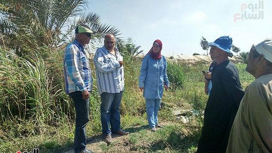 هناء الشربينى، رئيس مجلس مدينه بورفؤاد، القرى الزراعيه،سهل الطينه (2)