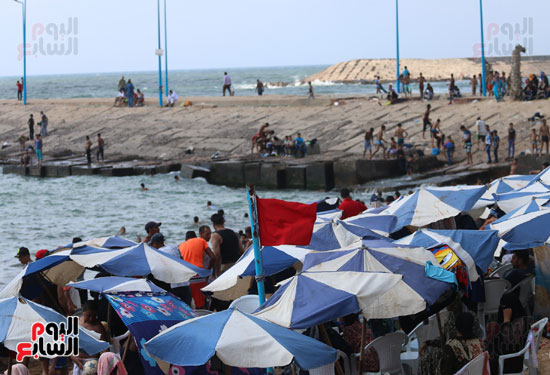 شواطئ الاسكندريه (11)
