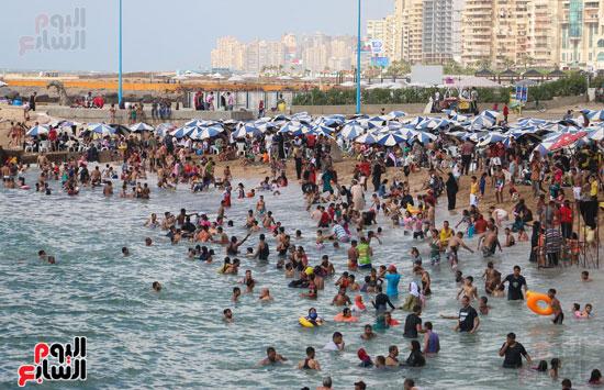 شواطئ الاسكندريه (4)