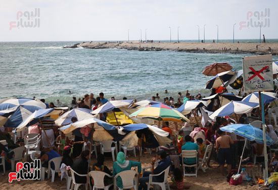 شواطئ الاسكندريه (24)