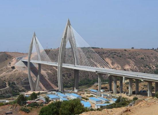 الجسر المعلق  (1)