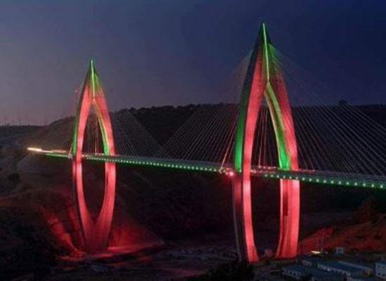 الجسر المعلق  (2)